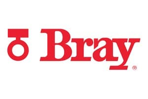 Bray International